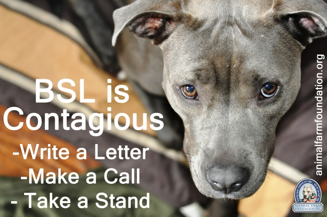 animal farm foundation: BSL is contagious