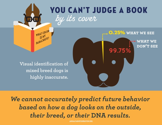 Animal Farm Foundation infographic 9