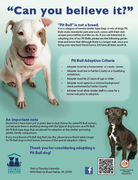 "A positive spin on ""pit bull rules"" and restrictions. Better, but not ideal!"
