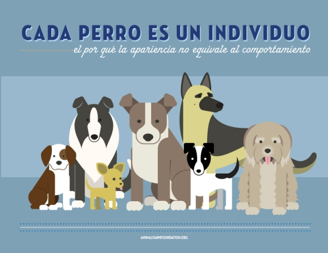 All Dogs Are Individuals [INFOGRAPHIC]: Spanish Translation
