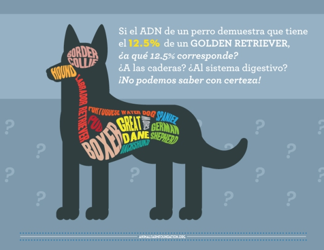 AFF_infographic_SPANISH_8