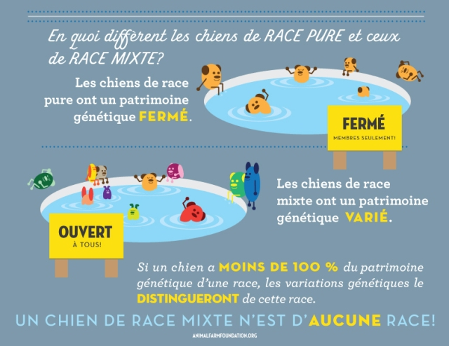 AFF_infographic_FRENCH_4