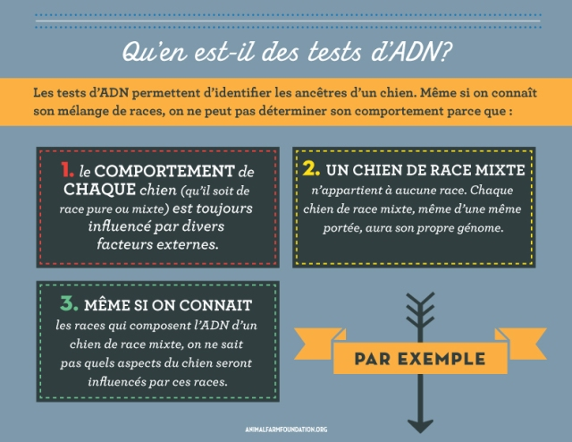 AFF_infographic_FRENCH_7