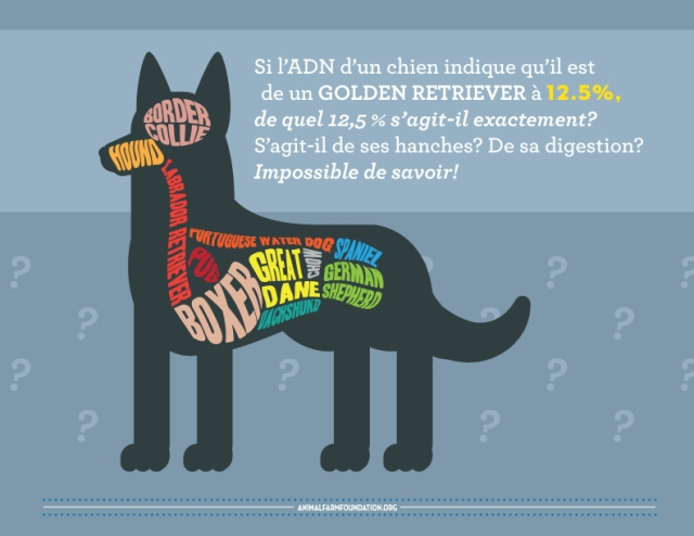 AFF_infographic_FRENCH_8