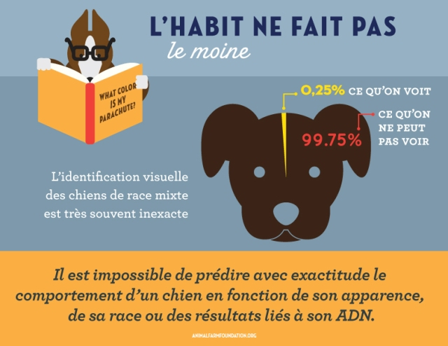 AFF_infographic_FRENCH_9