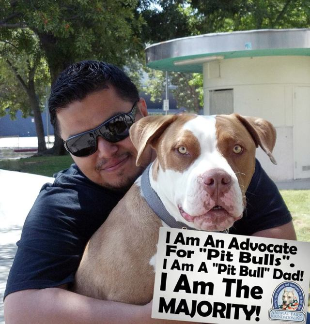 "The Majority Project: New Tools To Stop ""Pit Bull"" Dog Owner Discrimination"